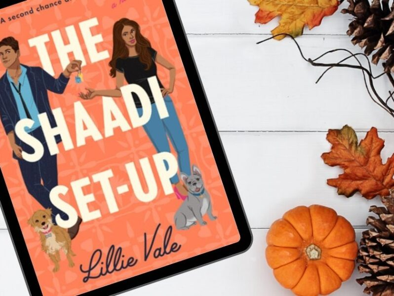 Book review of the shaadi setup